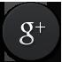 ikona_googleplus_HIGHPROTEIN.cz